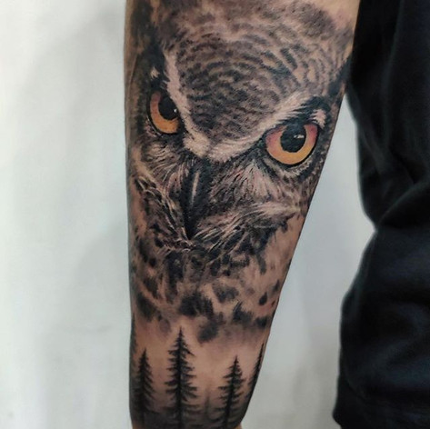 Owl Face and Forest