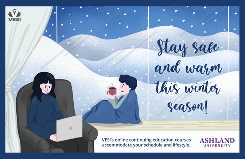 Winter 2020 - VESi Postcard