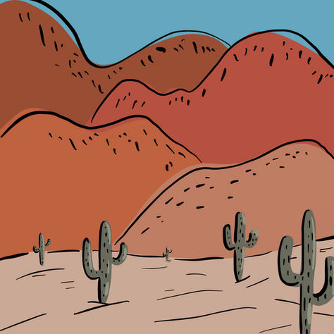 Cactus in the Summer