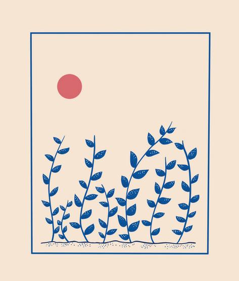 Vines towards the Sun