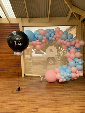 Balloon Garland, Mesh Wall, Personalised Name Disc and Gender Reveal Balloon