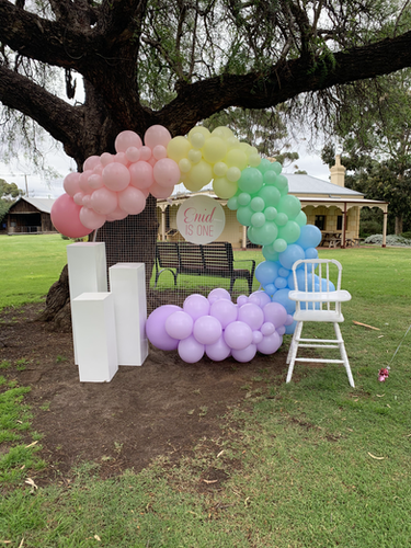 Balloon Garland, Mesh Wall, Personalised Name Disc, Plinths and High Chair
