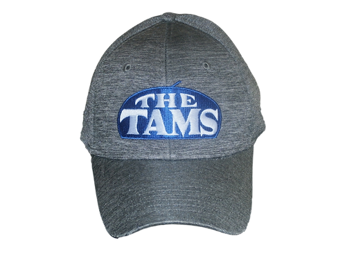 The Tams - Marled Big Logo hat