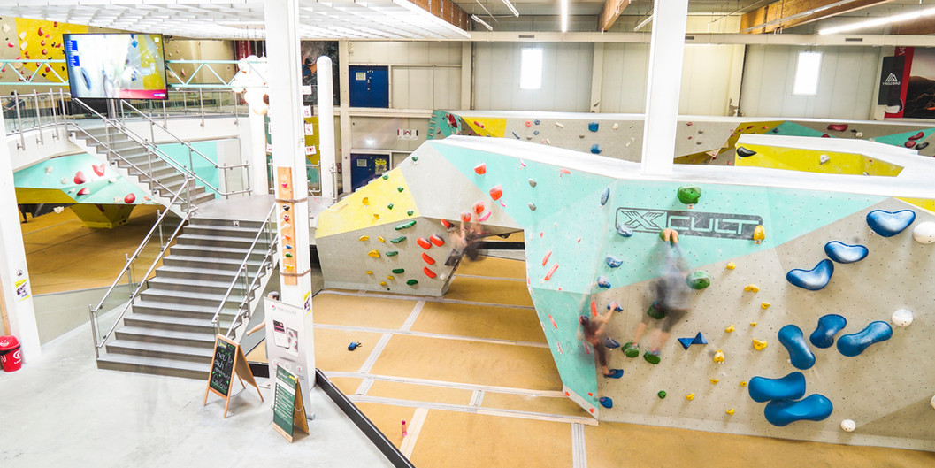 Boulderhalle Blockhaus_Pilz.jpg