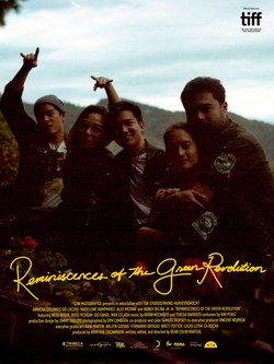 Reminiscences of the Green Revolution