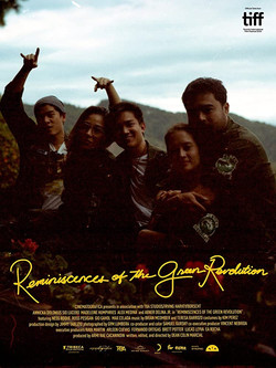 Reminiscences of a Green Revolution