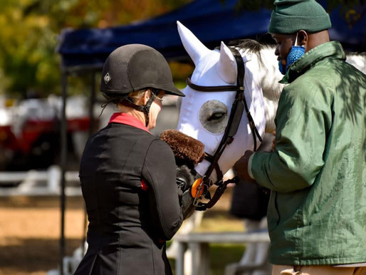 EQUINE COMPRESSION HOODS - The Method behind the Mask!