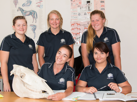 Beaulieu Equestrian Academy: Turning passion into a career
