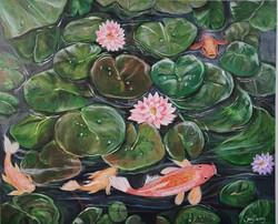 Lily pond Koi fish