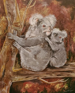 koala (2).jpg