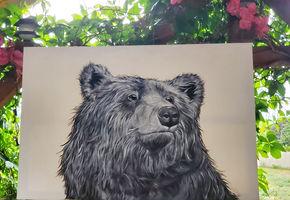bear6667.jpg