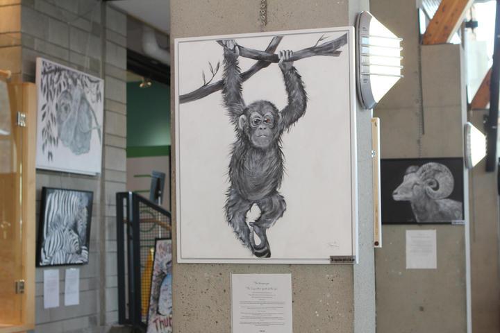 monkeysonia.JPG