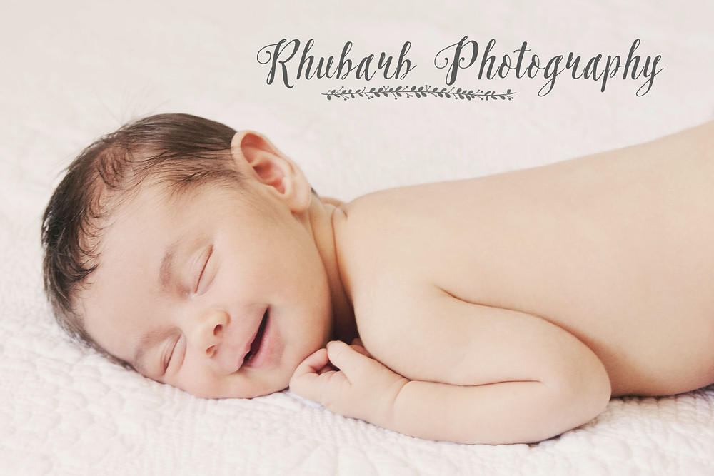 Rhubarb Photography Charlotte 5.jpg
