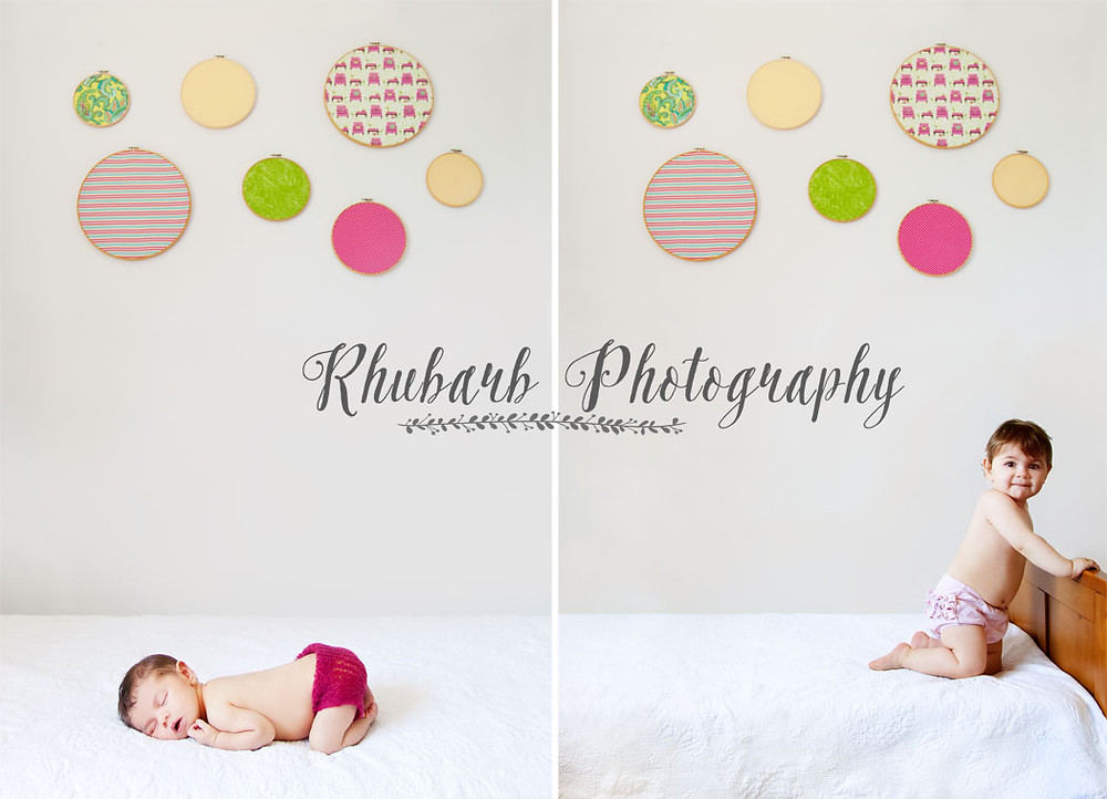 Rhubarb Photography Charlotte.jpg