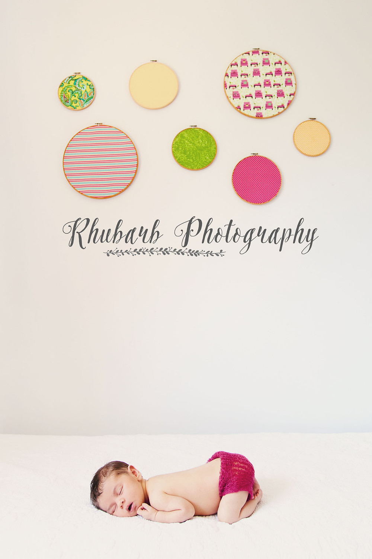 Rhubarb Photography Charlotte 2.jpg