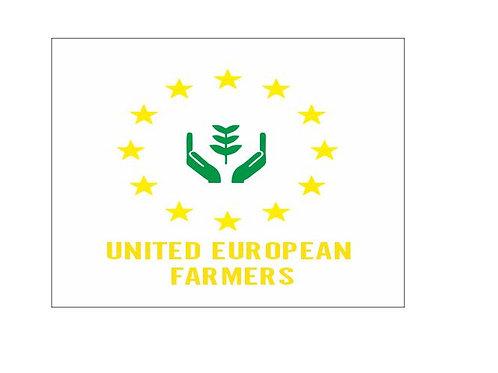 UNITED EUROPEAN AUFKLEBER AB 15 cm PVC