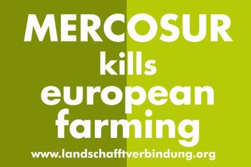 EUROPEAN BANNER MERCOSUR KILLS....  AB 1,20M PVC