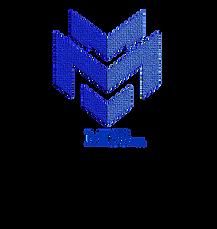 logo with Bolder MIS3 inc. below.png