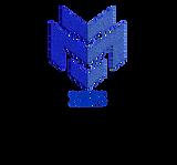 MIS3 logo no INC.png