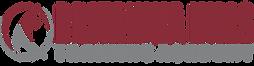 BH Academy logo.png