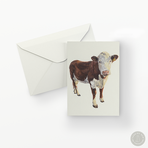 Hereford Cow Greetings Card
