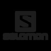 salomon-logo-preview.png