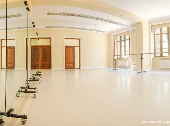 agata listwan art project dance educatio