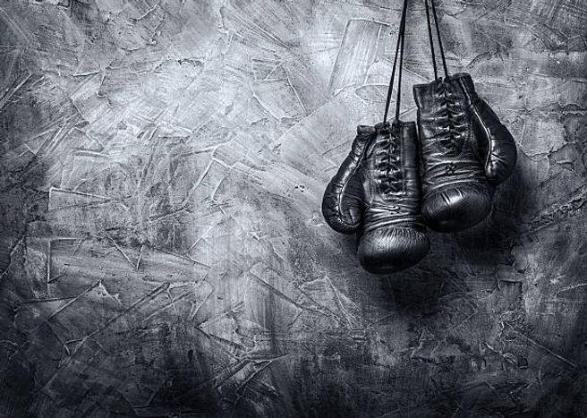 club boxe française pyrénées-orientales