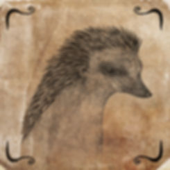 ZRI Hedgehog copy3.jpg