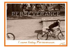 Flash- Perseverance.jpg