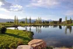 Mirror reflection of the Tetons