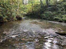 East coast trout stream