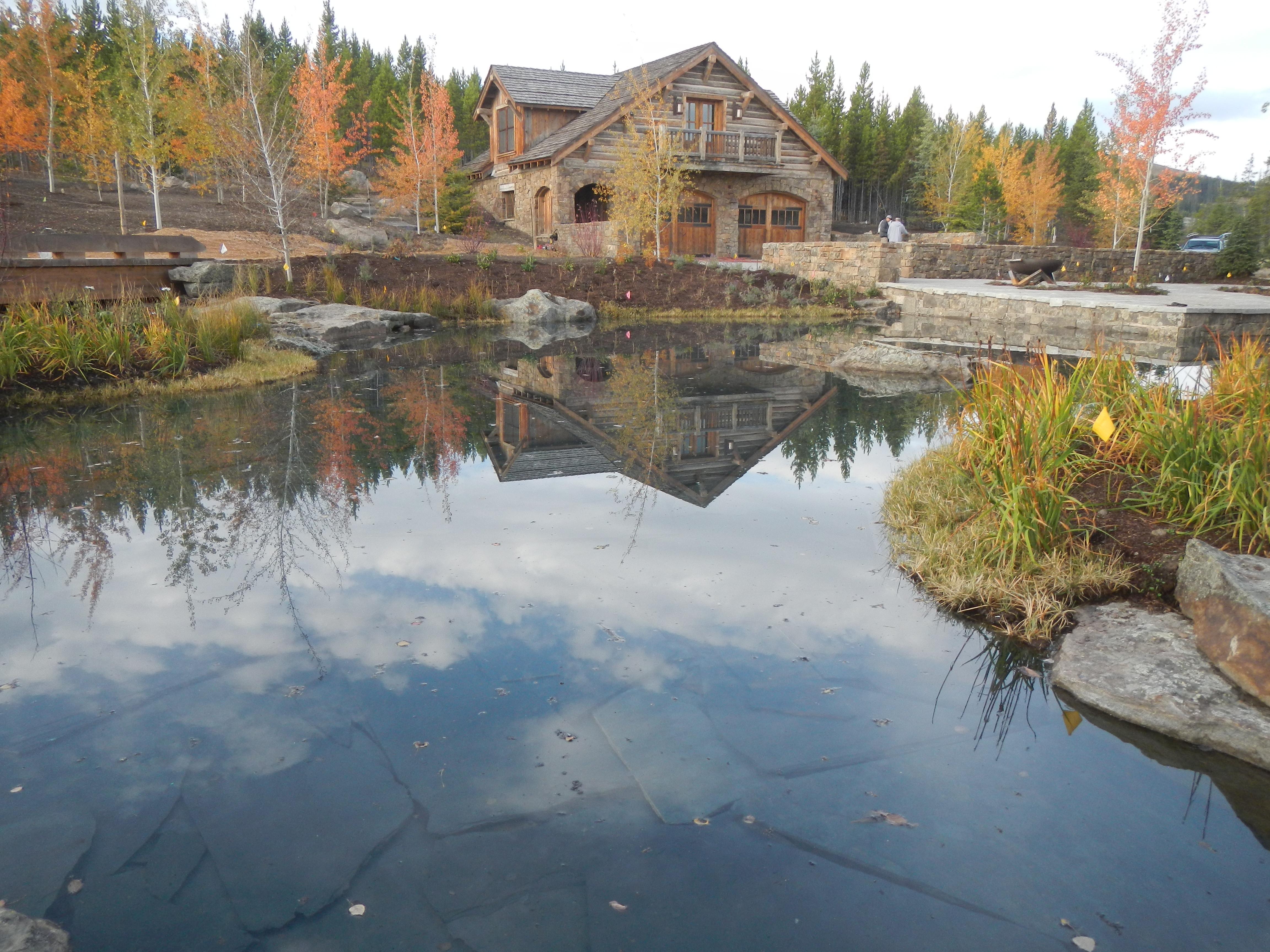 Reflecting pool with vegitation