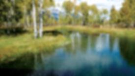Lake Creek Ranch Project