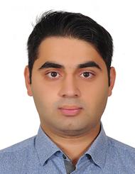 Arash S Amjadi