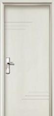 door options - Copy (3).png
