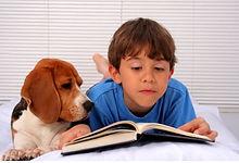 ler_para_cão.JPG