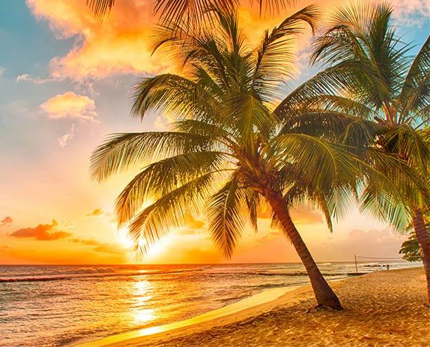 barbados_rhianna_beach.jpg