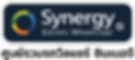logo-synergy-thailand.png