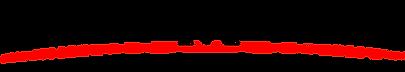 VanderMorgan Logo.png
