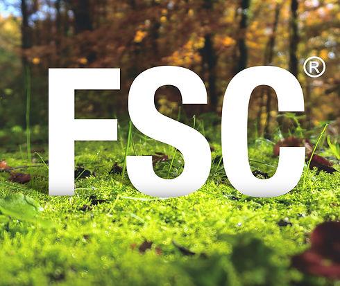 FSC BANNER-01.jpg