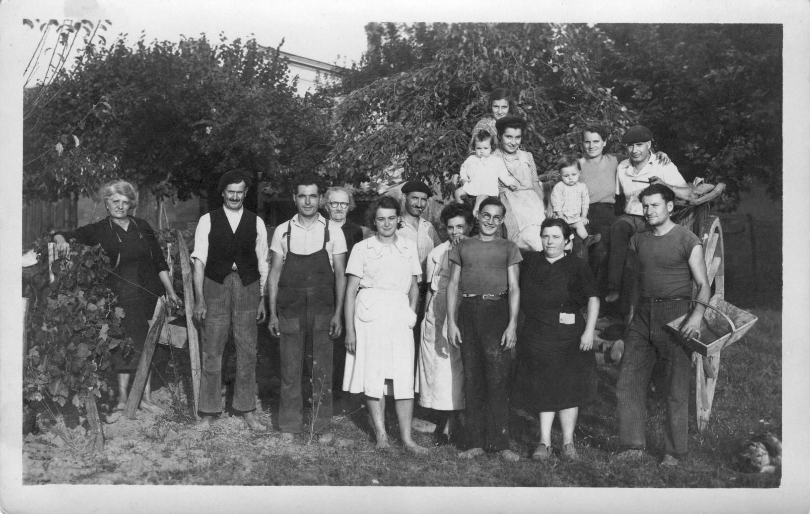Vendanges 1944