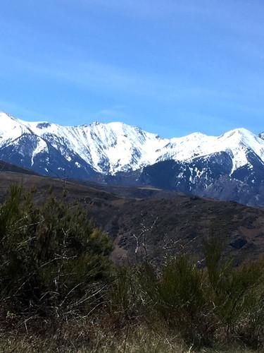 Mount Canigou // Vue du Mt Canigou