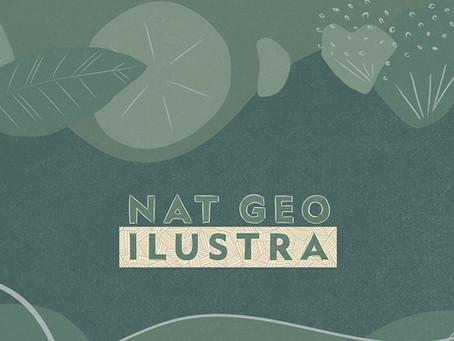 Nat Geo Ilustra: a resistência e os cuidados de preservação do Cerrado e outros biomas brasileiros