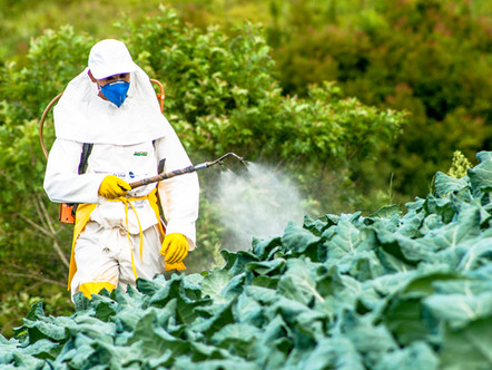 Agrotóxicos e seus efeitos na saúde humana e animal