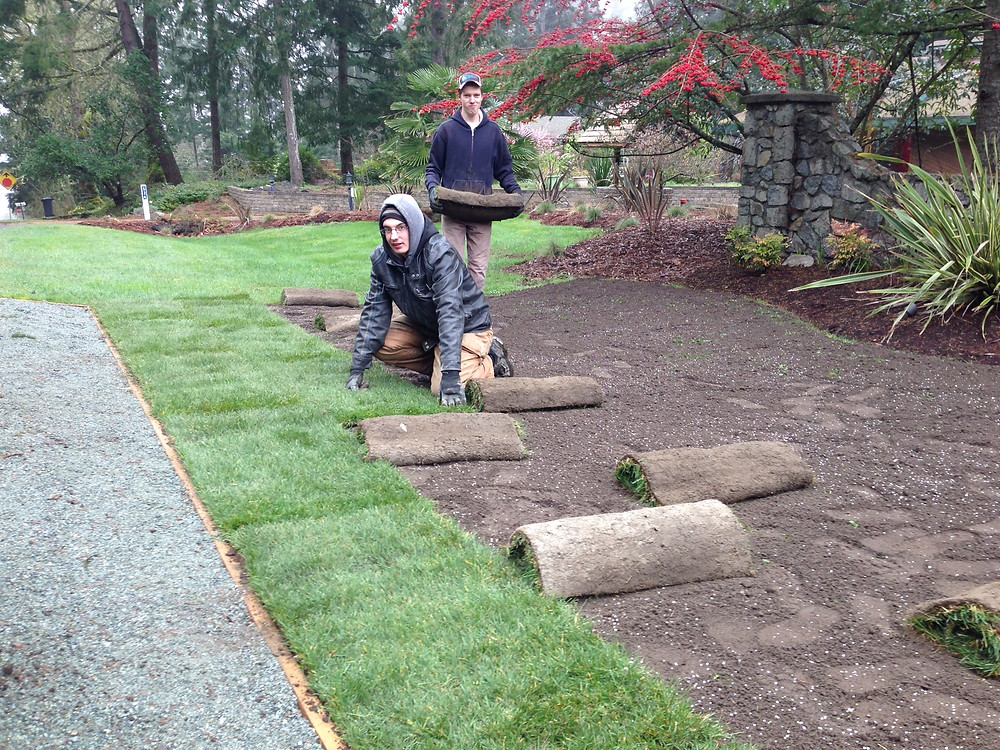 sod project