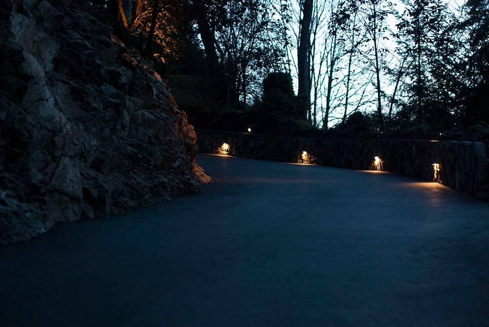 Landscape lights shining on driveway at night.