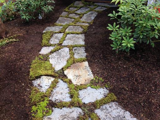 Flagstone foot path