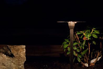 Low voltage landscape lighting at night.