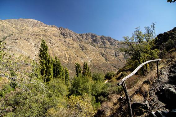 Vista desde sendero